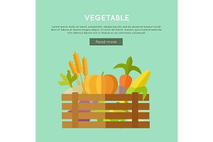 Vegetable Vector Web Banner