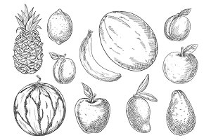 Fresh fruits sketches