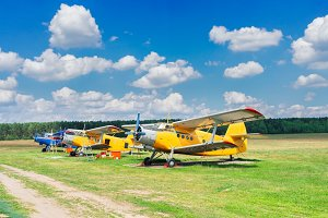 Row of vintage airplanes