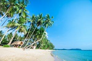 Tropical beach with sea