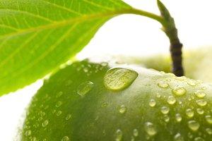 fresh green wet apple with leaf, granny smith  macro shot