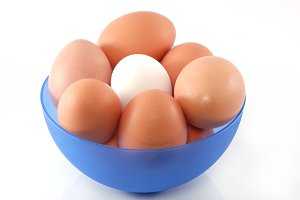 Chicken eggs in blue dish