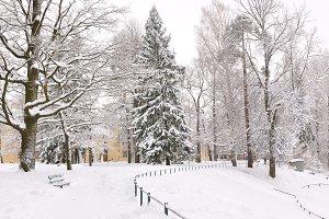 winter park, Pavlovsk, Saint-Petersburg, Russia