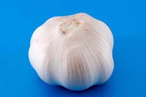 Garlic on blue background
