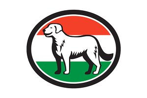 Kuvasz Dog Hungarian Flag Oval Retro