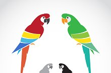 Vector image of a parrot.