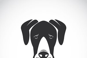 Vector image of a dog (Great Dane)