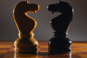 Chess knights. The concept of confrontation