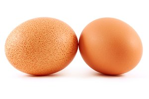 two eggs isolated on white