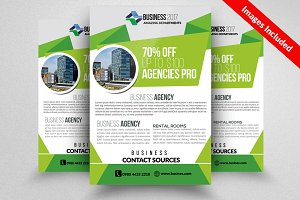 Consult & Advisory Flyer Template