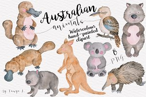 Australian Animals Watercolor Set