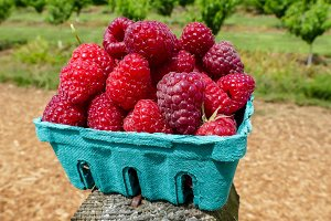Raspberries inside container