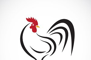 Vector of cock design.