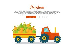 Pear Farm Web Vector Banner