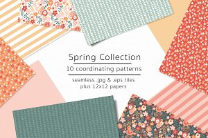 Spring Collection-vector & jpgs