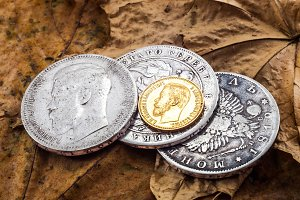 coins on leaves