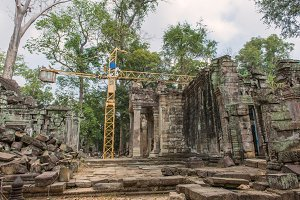 tree roots cover a Angkor temple