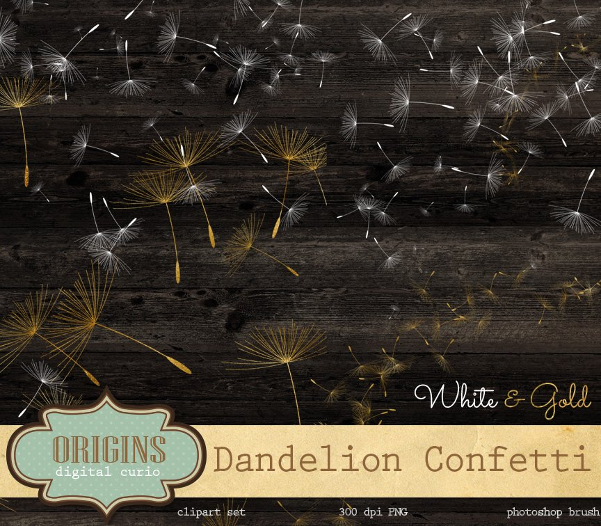 Dandelion Overlays And Brushes Add Ons Creative Market