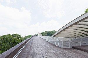 Bridge walkway in the park