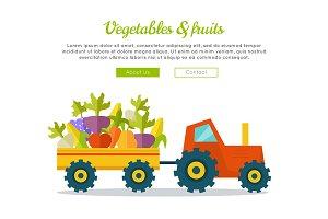 Vegetables Fruits Concept