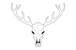 Deer skull. Vector