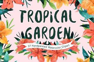 Tropical Garden Watercolor clipart