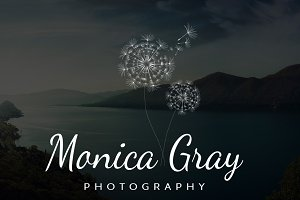 Monica Gray Premium Premade Photogra