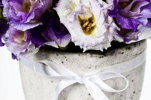 Beautiful eustoma flowers