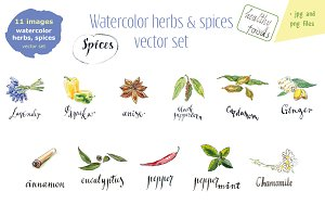 Watercolor herbs & spices-2