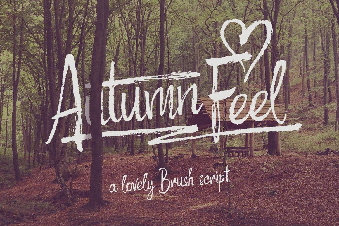 Autumn Feel Font Script Fonts Creative Market