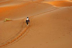 Arenas de Merzouga (Marruecos)