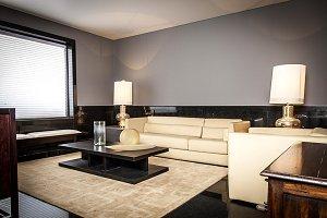 contemporary elegant room