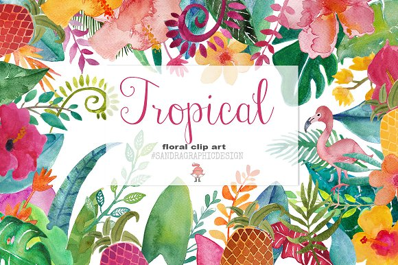 Tropical floral clip art ~ Illustrations on Creative Market
