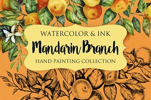 Mandarin Branch Watercolor&Ink