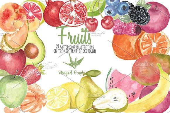 watercolor fruit illustrations