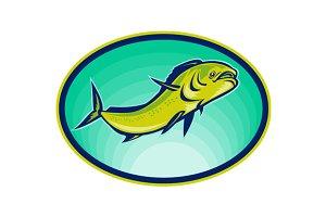 Dorado Dolphin Fish Mahi-Mahi