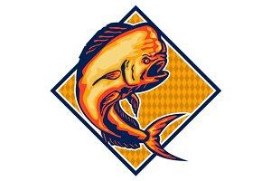Dorado Dolphin Fish Mahi-Mahi Re