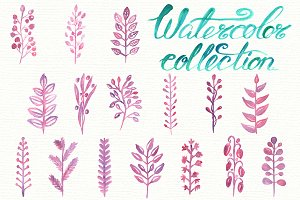 Set of watercolor floral elements