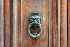 Iron lion doorknob on wooden door
