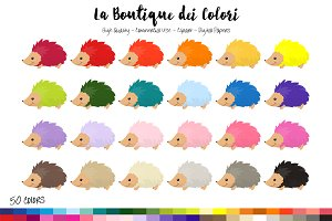 50 Rainbow Hedgehog Clip Art