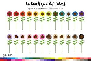 50 Rainbow Sunflower Clip Art