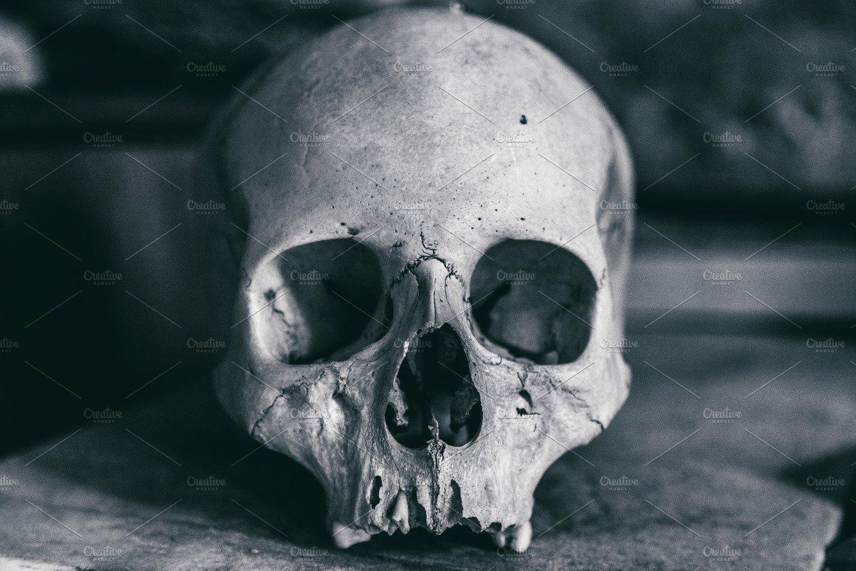 Dramatic Human Skull Health Photos Creative Market
