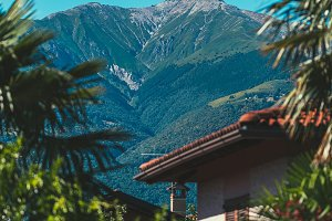 Palm Trees & Alps in Lake Como