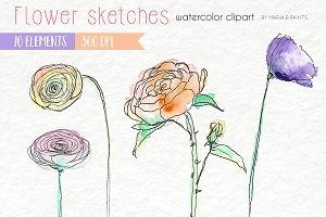 Watercolor Clip Art - Sketch Flowers