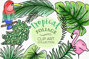 Tropical Foliage Watercolor Clip Art