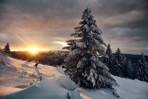 Winter in Mollendruz - Switzerland