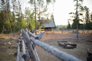 Wilderness cabin and corrals