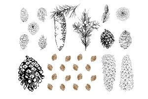 cones vector set