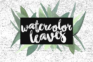 Handpainted Watercolor Leaves Pack