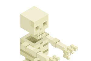 Sceleton Halloween